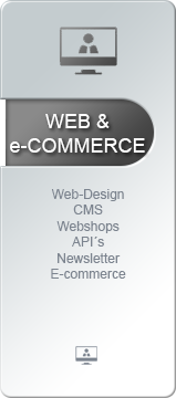 Web und e-Commerce